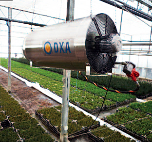 winterwarm dxa greenhouse